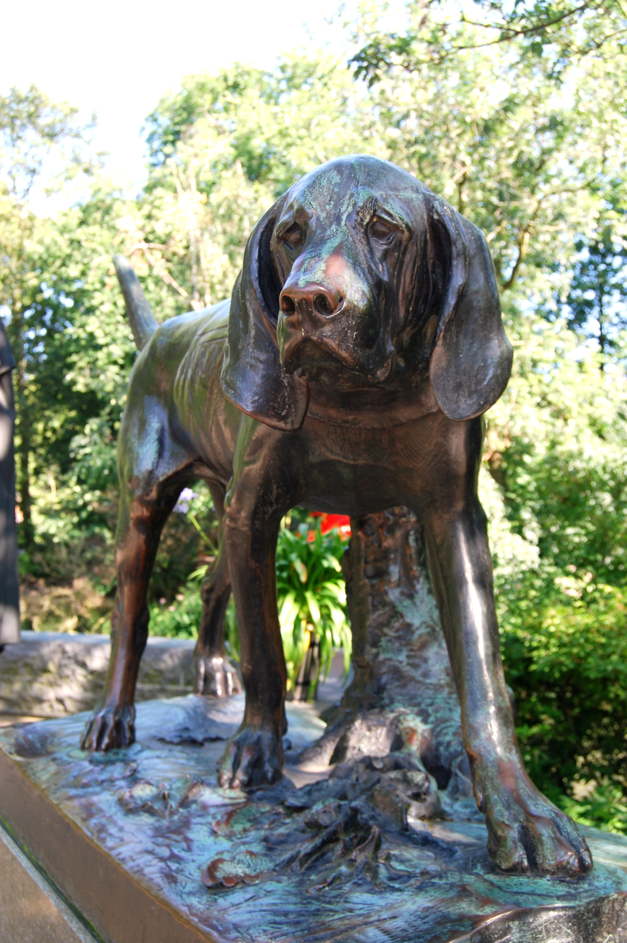 Amsterdam, Holland: Guard Dogs at the Amsterdam Zoo | Dog