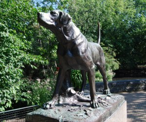 dog, sculpture, amsterdam
