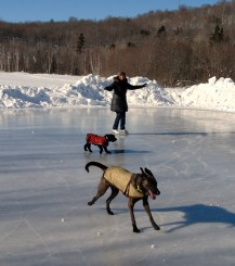 skating at deerhurst