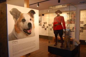 Animal Hall of Fame Toronto