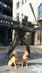 pittsburgh dog PNC