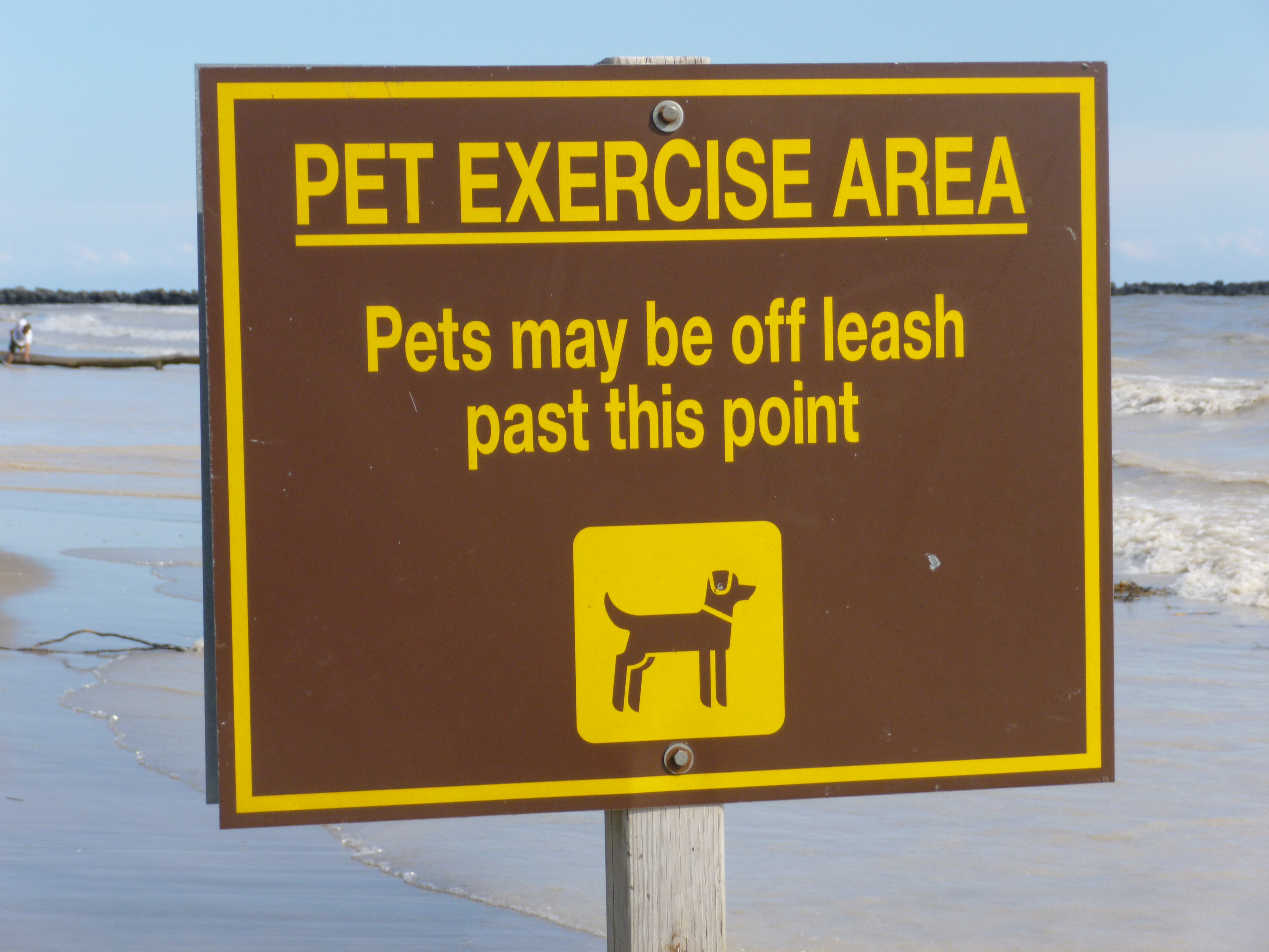 Half The Dog Beach Is For Leashed Dogs And The Other End A Notable Walk From The Parking Lot Is Leash Free This Is Where Dogs Can Be Dogs They Run