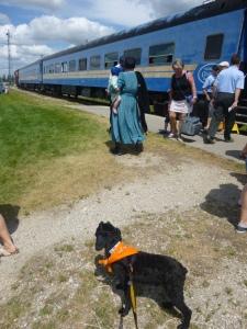 waterloo central railway train