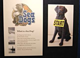 Sea Dogs exhibit at Door County Marine Museum, WI