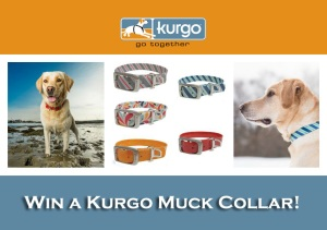 kurgo-muck-collage