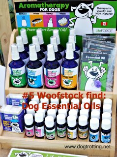 essential oils for dogs woofstock