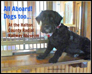dog in historic train station dogtrotting.net