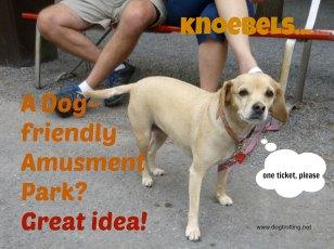 amusement park dogs