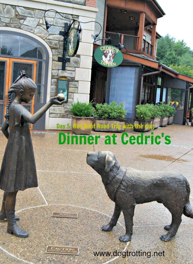 Cedric's