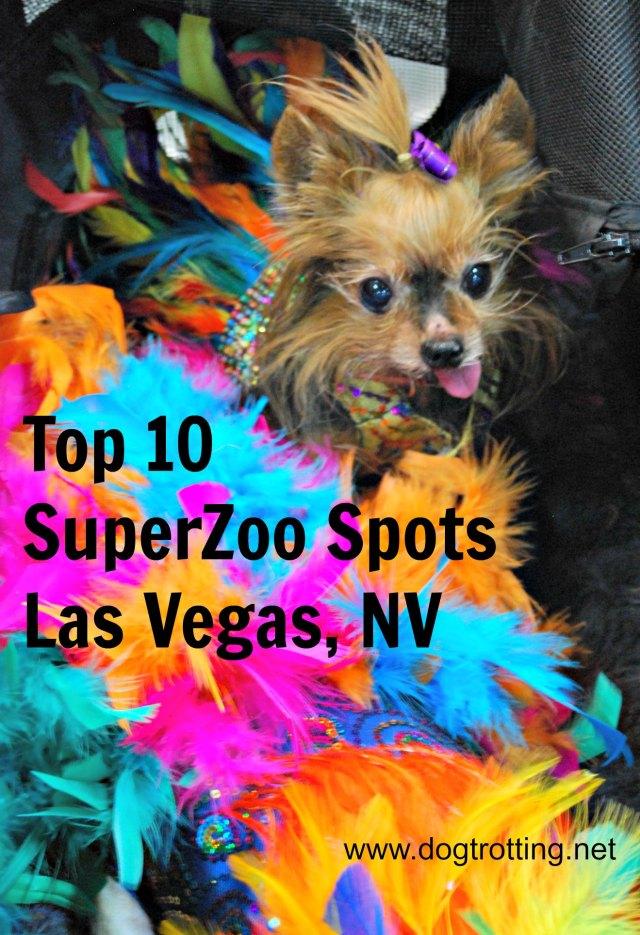 SuperZoo 2016