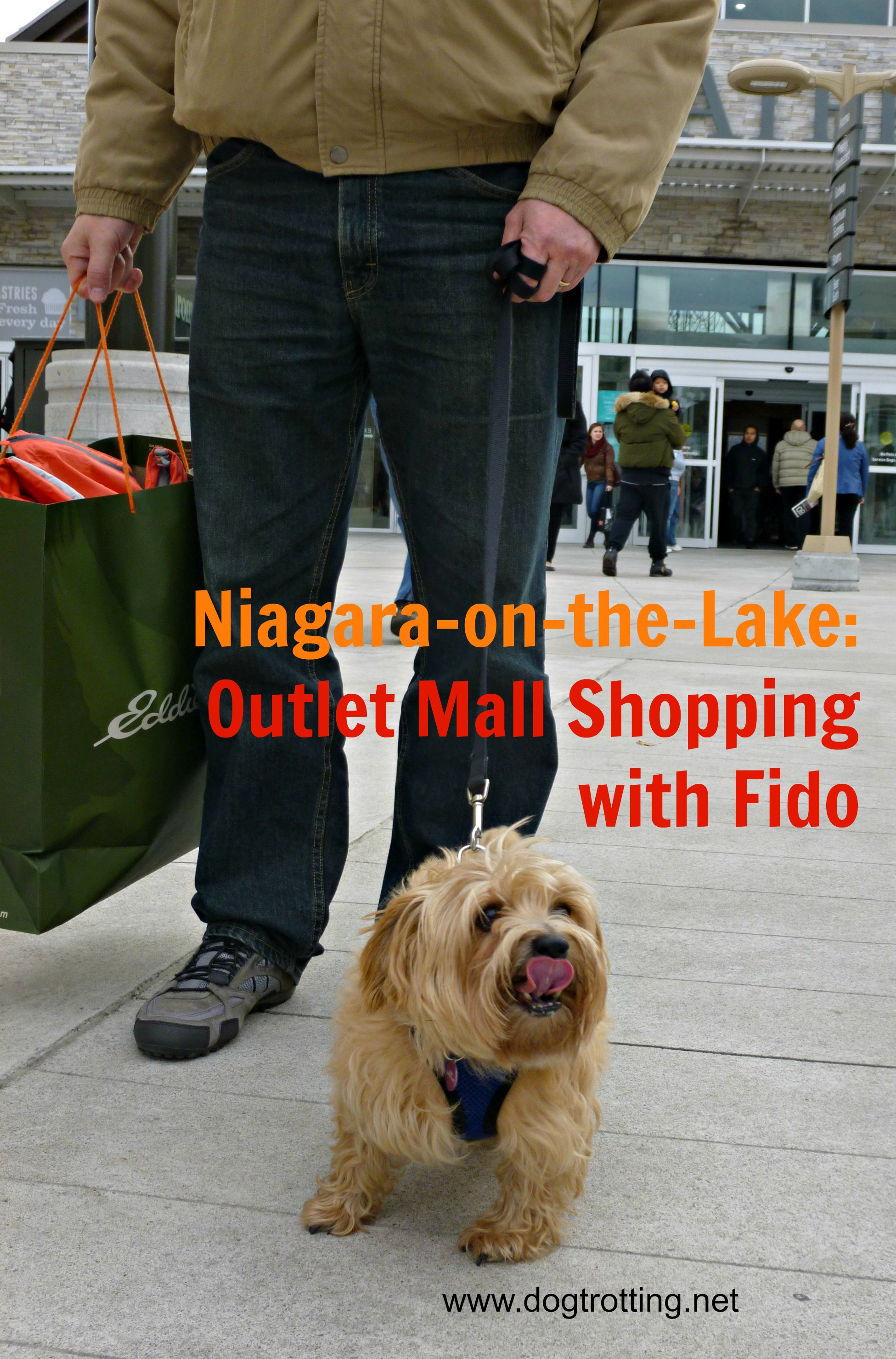 dog-friendly shopping Niagara on the Lake, Ontario