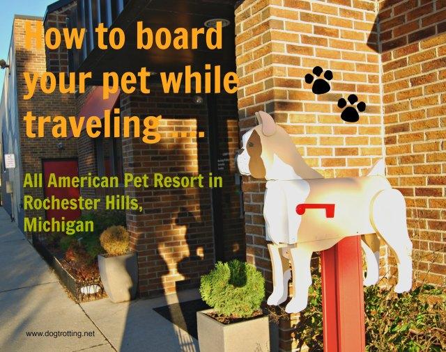 michigan-pet-boarding
