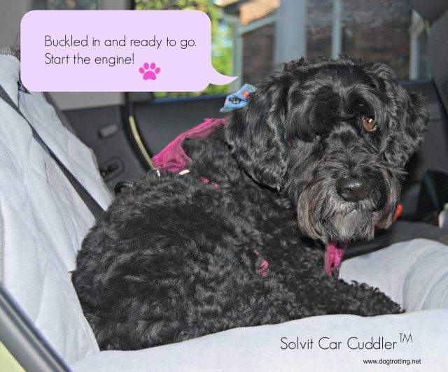 solvit-car-cuddler-2