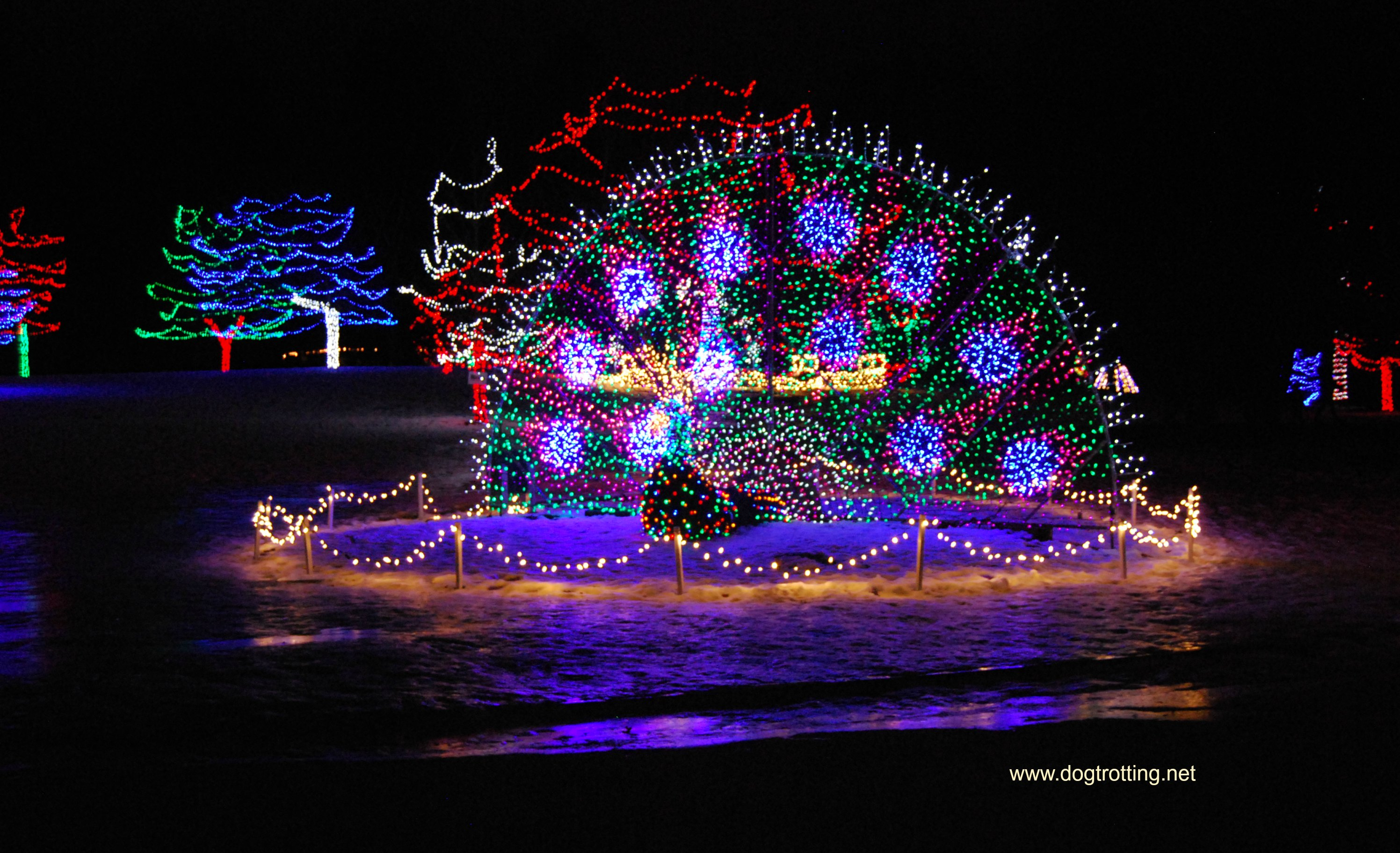 Travel Brant, ON: Pawing around at the Brantford Lights at Glenhyrst ...