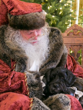 Victor with Santa Christmas photo www.dogtrotting.net