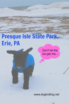 victor-on-beach-in-presque-isle-state-park