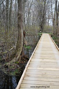 Trail at Point Pelee National Park