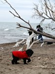 Southernmost at Point Pelee National Park Canada