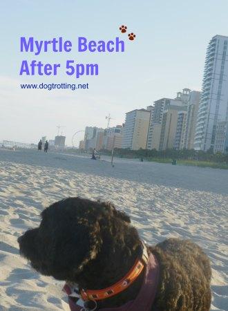 Myrtle Beach beach