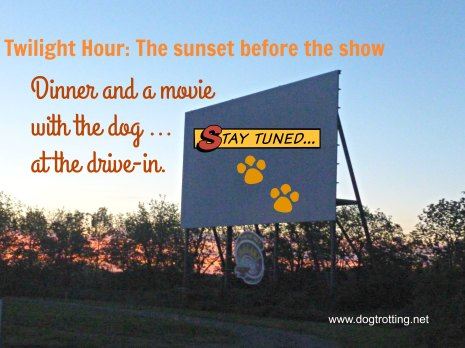 Dog-friendly Starlite Drive-in at Dusk