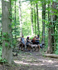 Bruce Trail hiking at Muddy Paws wine and dog festival Vineland Ontario dogtrotting.net