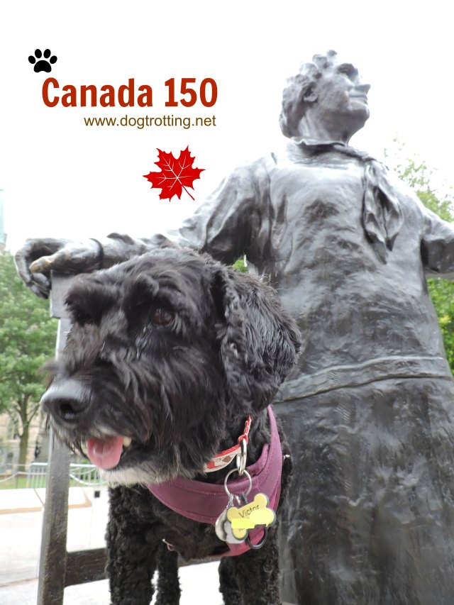 dog at Parliament Buildings in Ottawa, Ontario