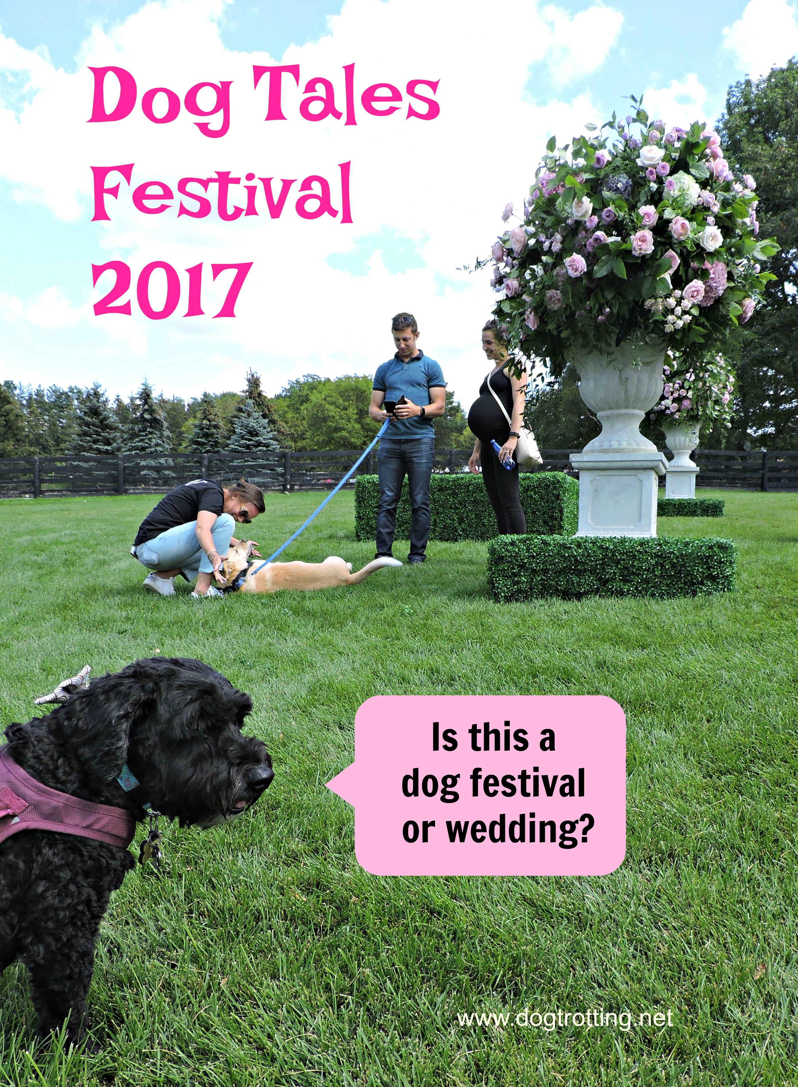 dog tales festival www.dogtrotting.net