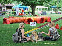 A dog agility course at A Day for Dogs at Fanshawe Pioneer Village, London, Ontario www.dogtrotting.net