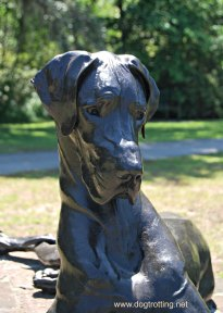 dog sculpture 6