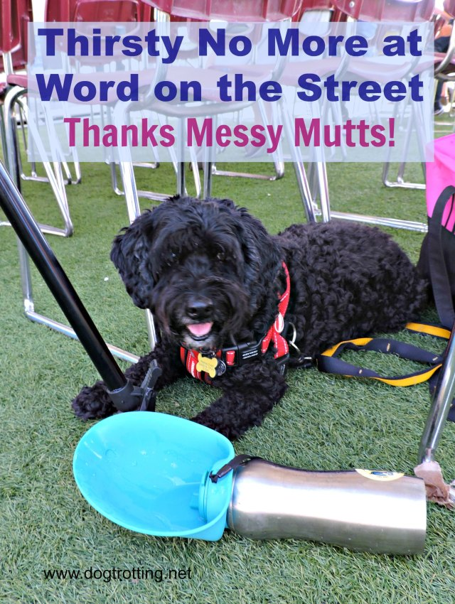 Dog with Messy Mutts travel water bottle at Word on the Street