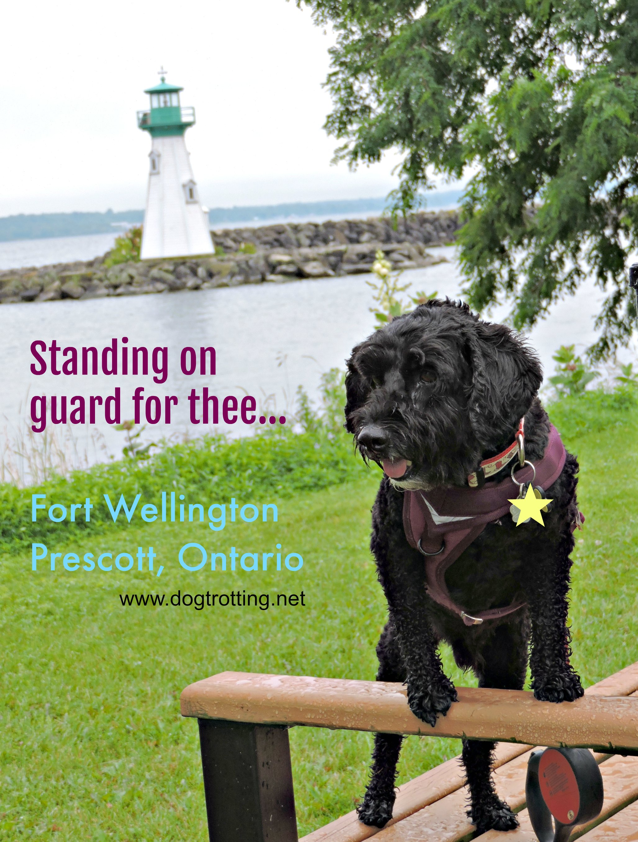 Park Quest #7: Fort Wellington National Historic Site Prescott, Ontario
