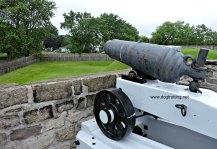 Canon at dog-friendly Fort Wellington, Prescott, Ontario