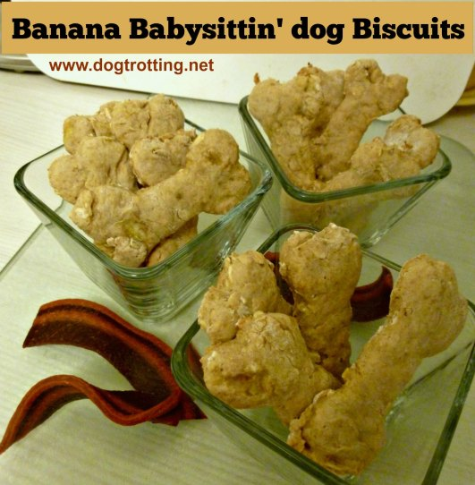 oat and banana bone-shaped dog biscuits