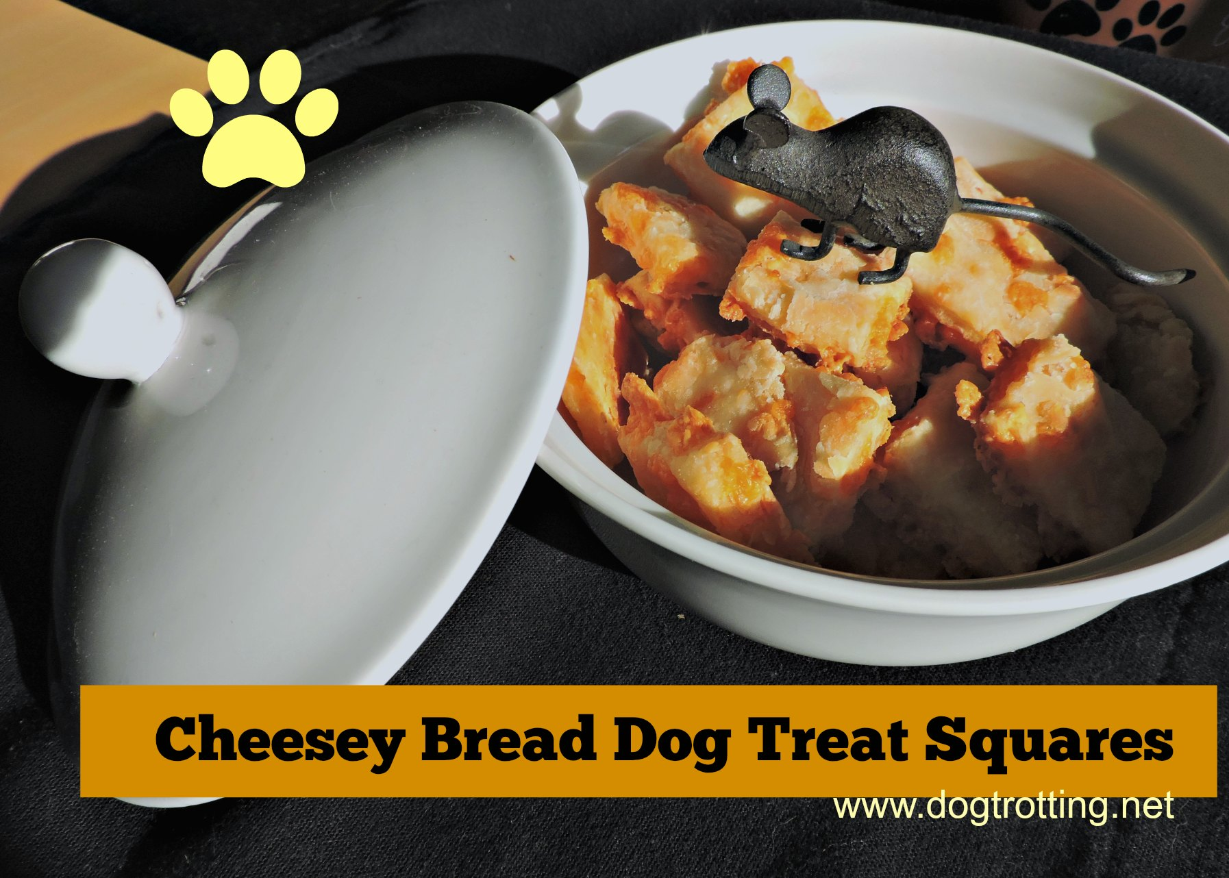 bowl of cheesey bread dog treat squares