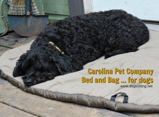 dog sleeping bag 2