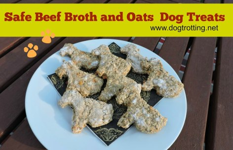 beef broth dog treats