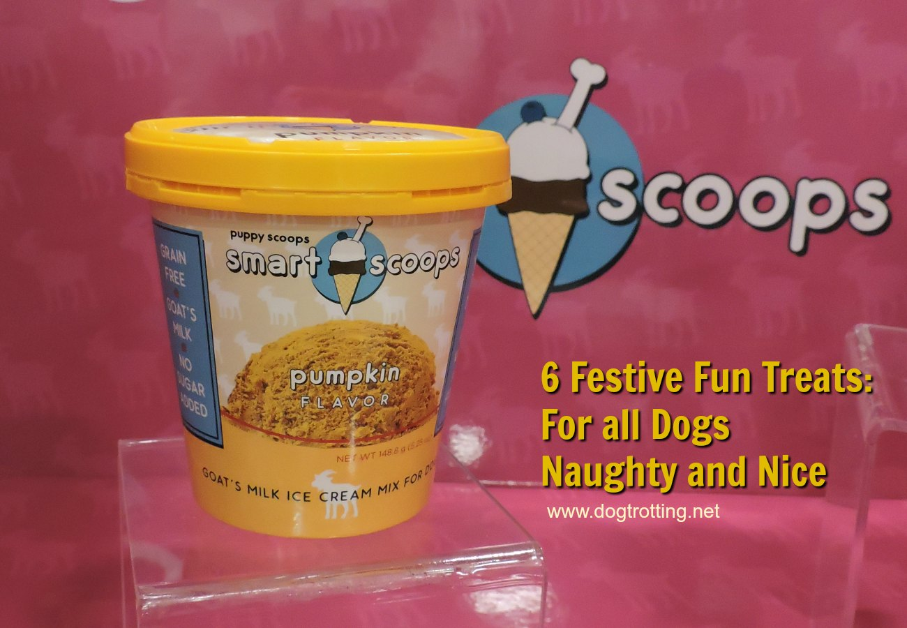 6 Festive Treats: For all Dogs Naughty and Nice