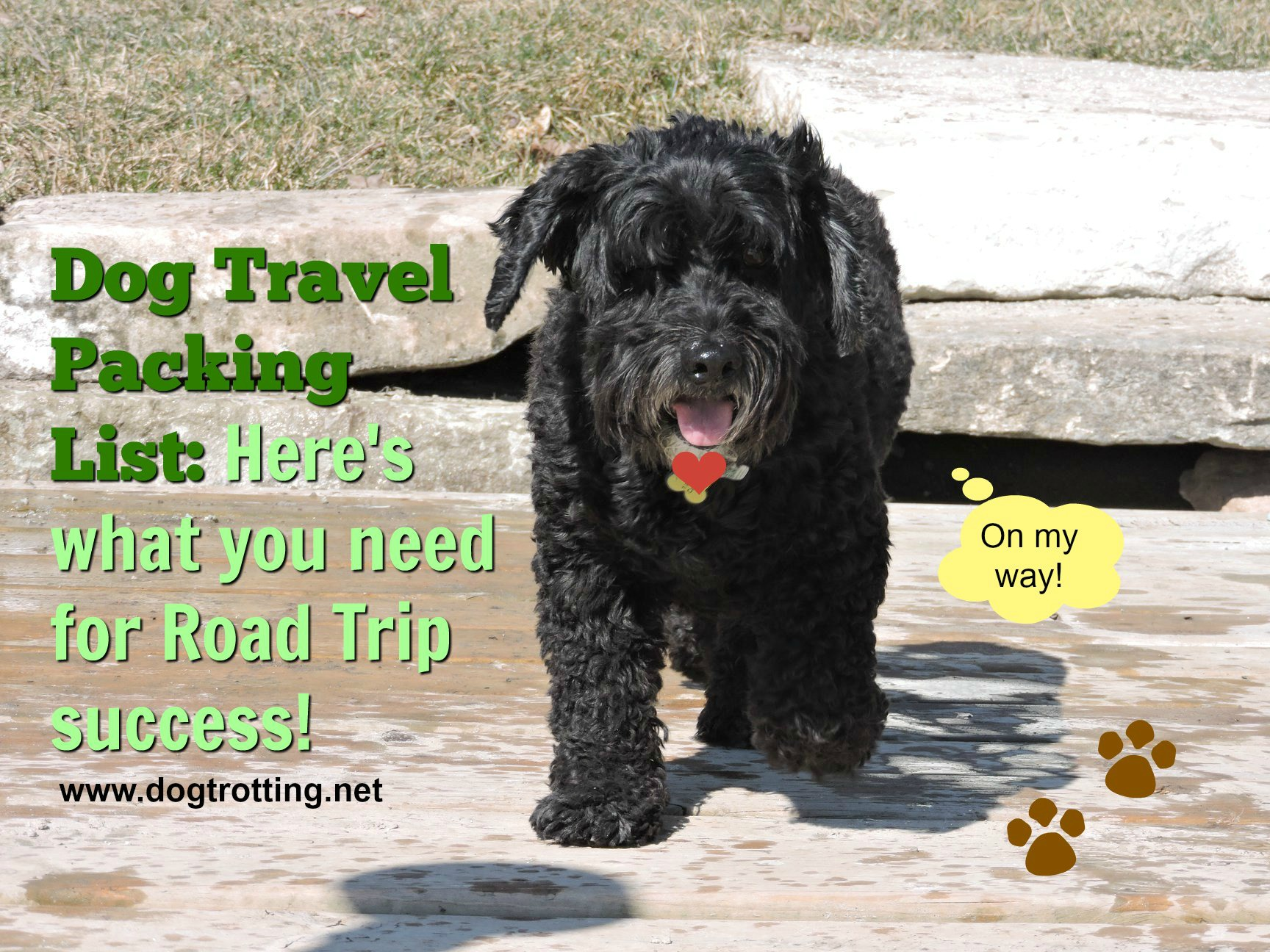 We're Off! Dog Travel Road Trip Packing List … NC or bust.