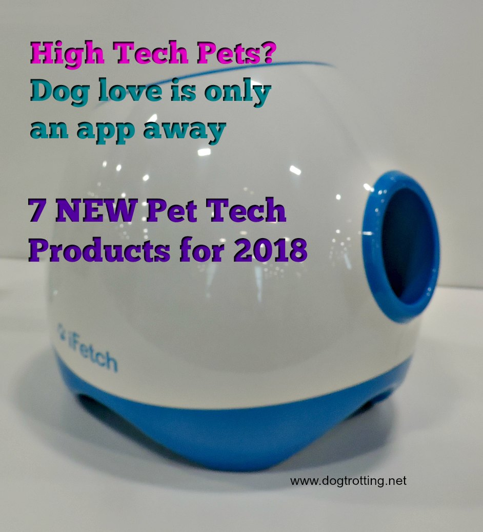 7 New Pet Tech Products You Didn't Know You Need .. but might