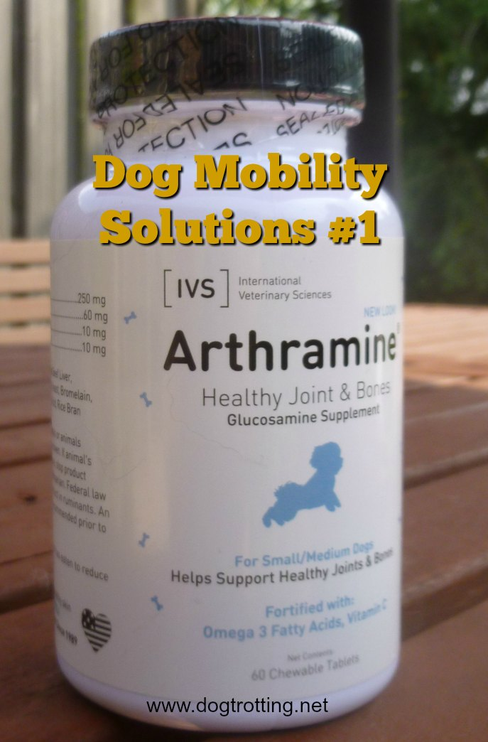 Solutions for Aging Dog Mobility Issues Part #1: Glucosamine supplements