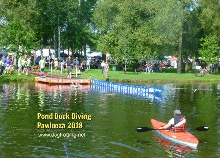 dock diving at Pawlooza 2018 dog festival