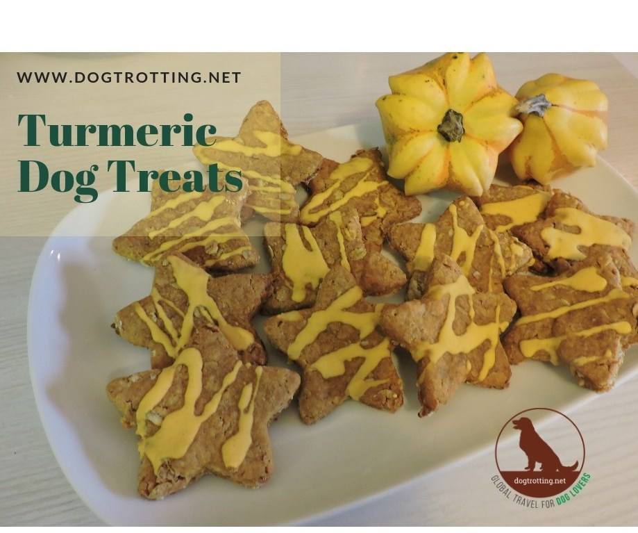 Solutions for Aging Dog Mobility Issues Part #6: Turmeric Terrific Dog Treat Recipe