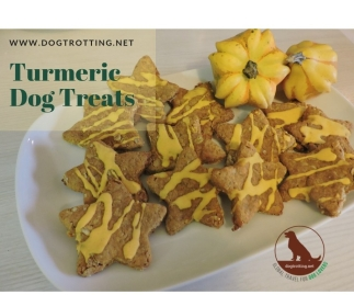 recipe for turmeric dog treats