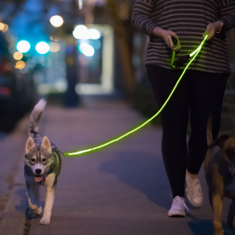 Nitey_Leash_Fiber_Optic_LED_Dog_Leash_Green_2048x