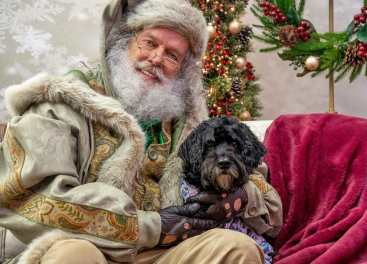 67 Holiday Pet Photo Opportunities In Ontario Canada 2019 Dog Trotting