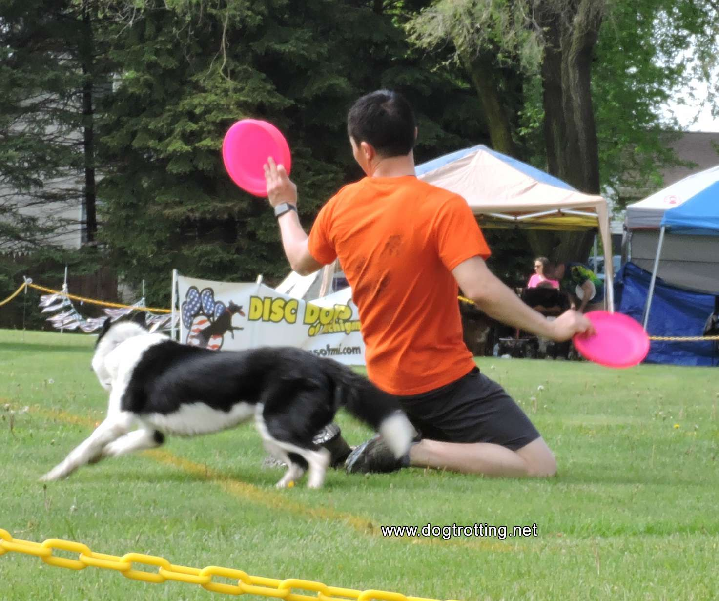 Disc Dogs at Dog Bowl 2019