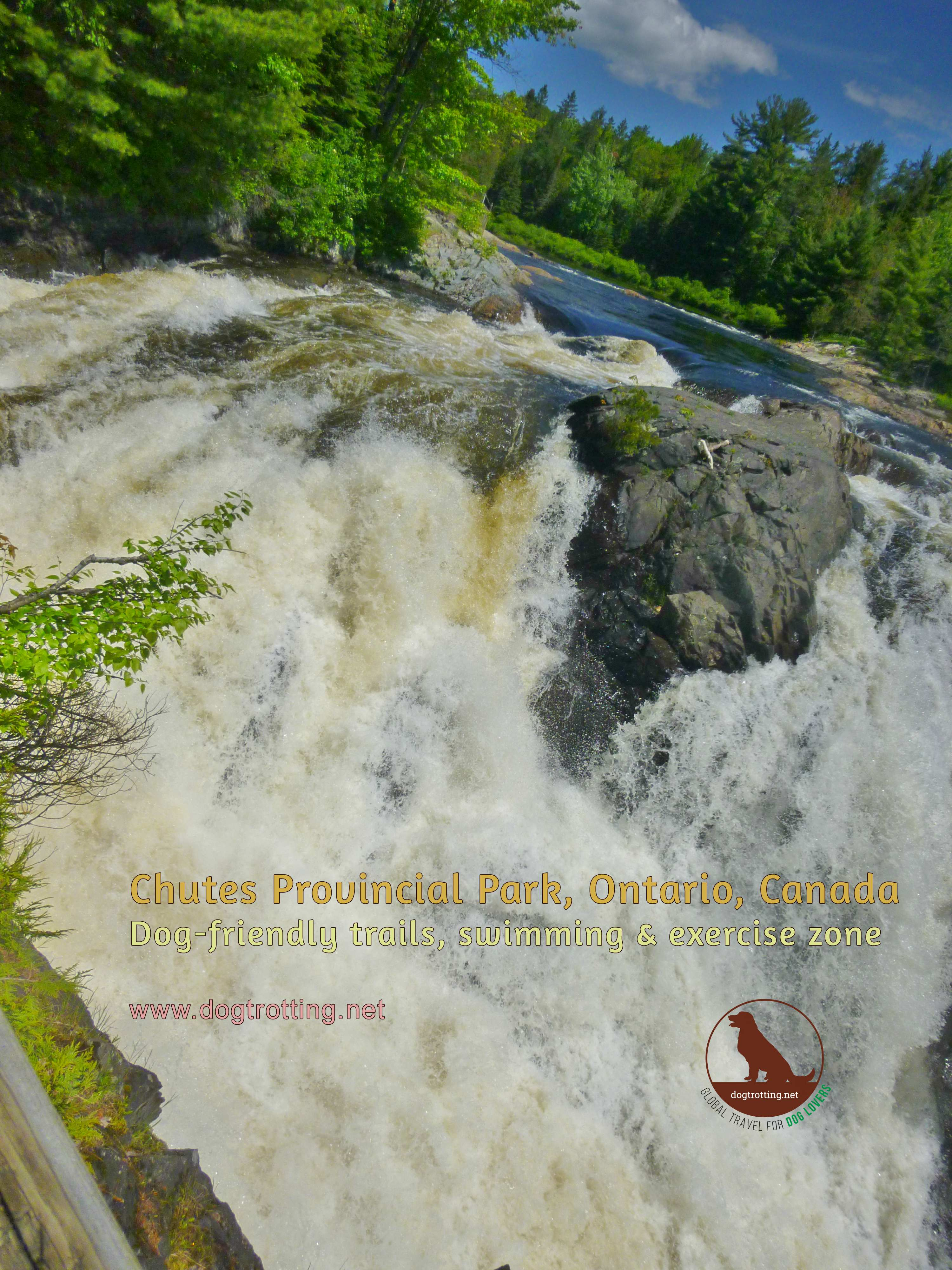 Summer of Parks Ontario: Chasing Waterfalls at Chutes Provincial Park (with the dog) … plus free park day!