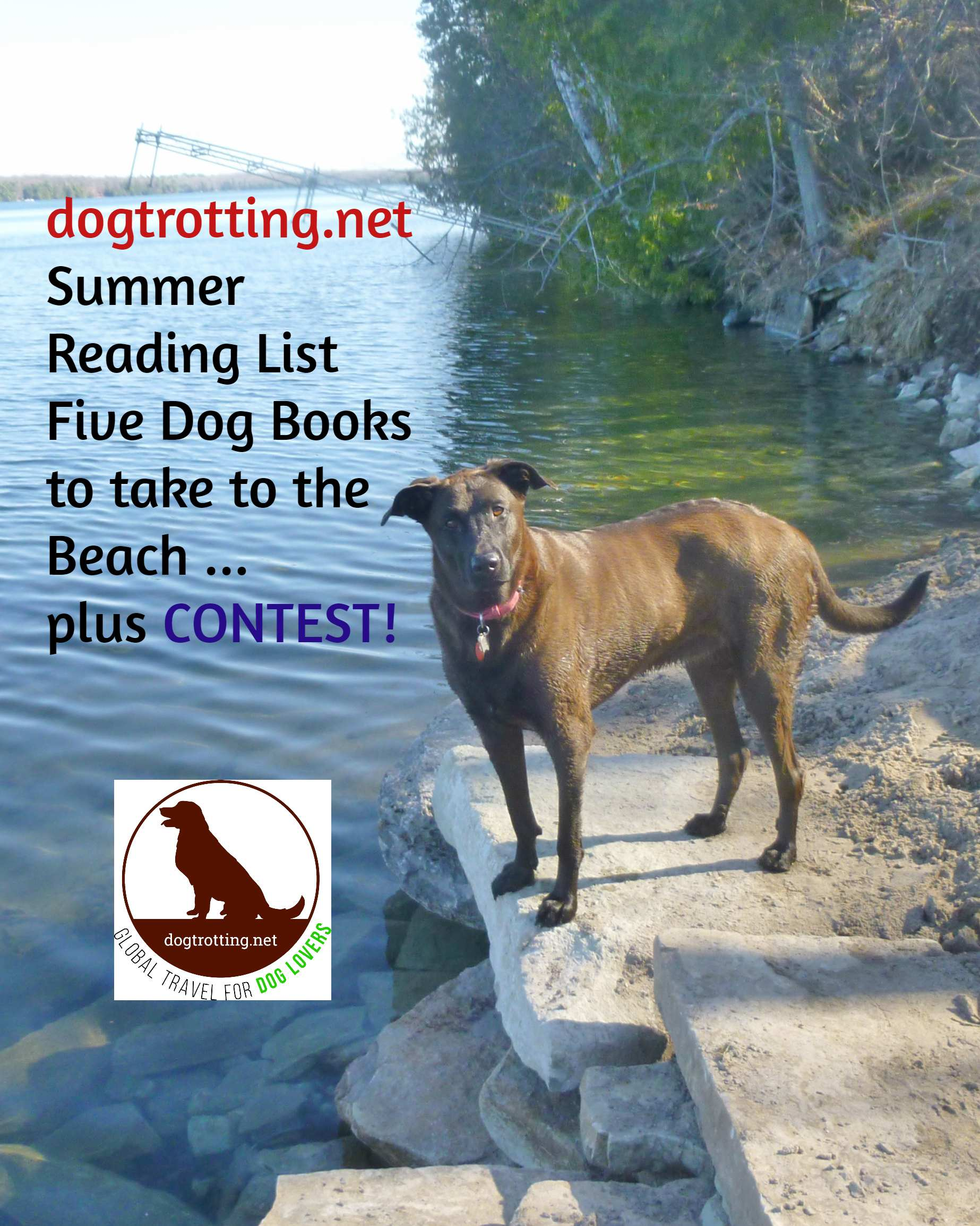 Contest! The Dog Books of Summer Reading List 2019