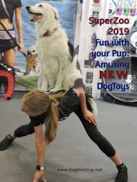 dog trainer with dog on her back