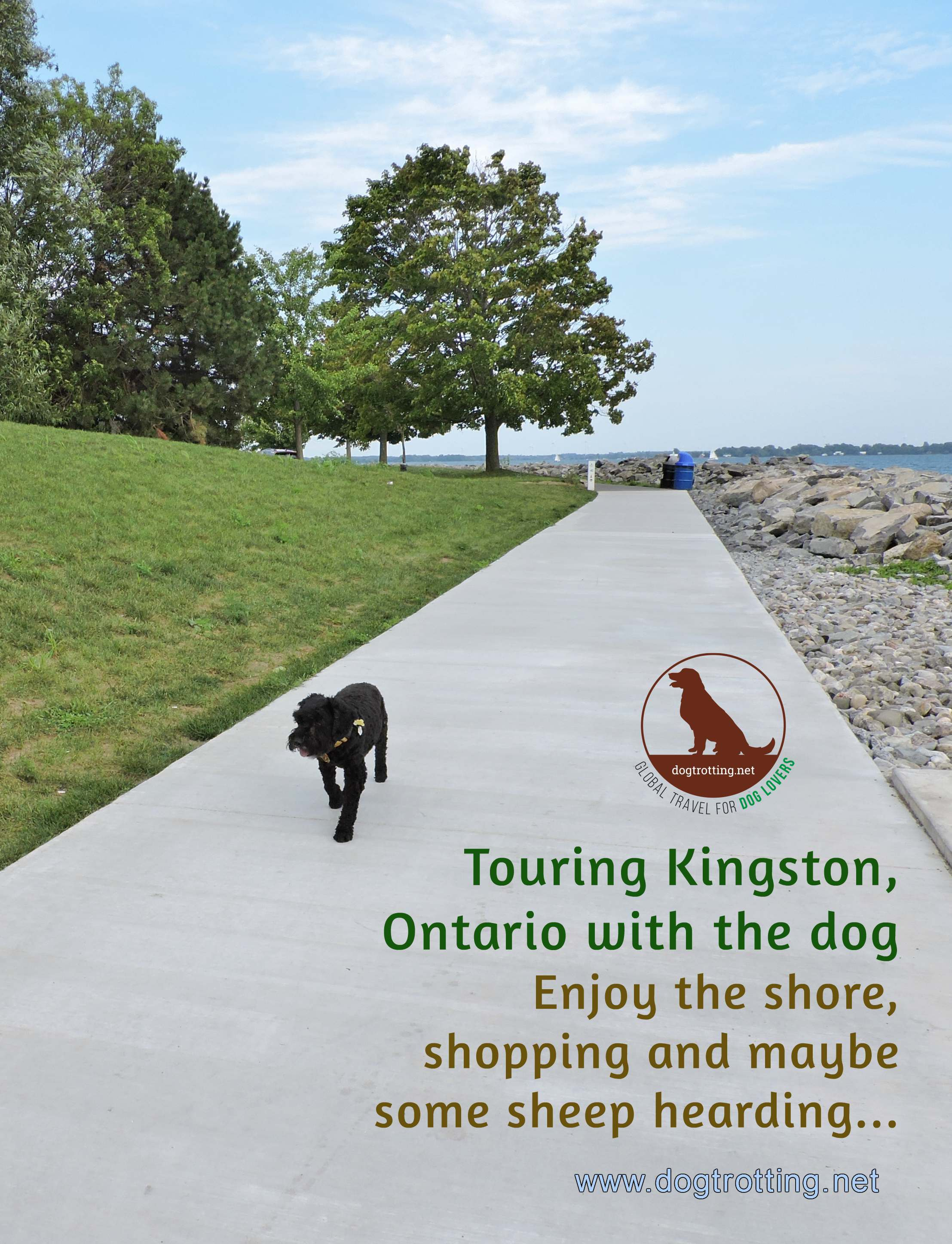 Travel Kingston, Ontario: Where to go (and not go) with your dog